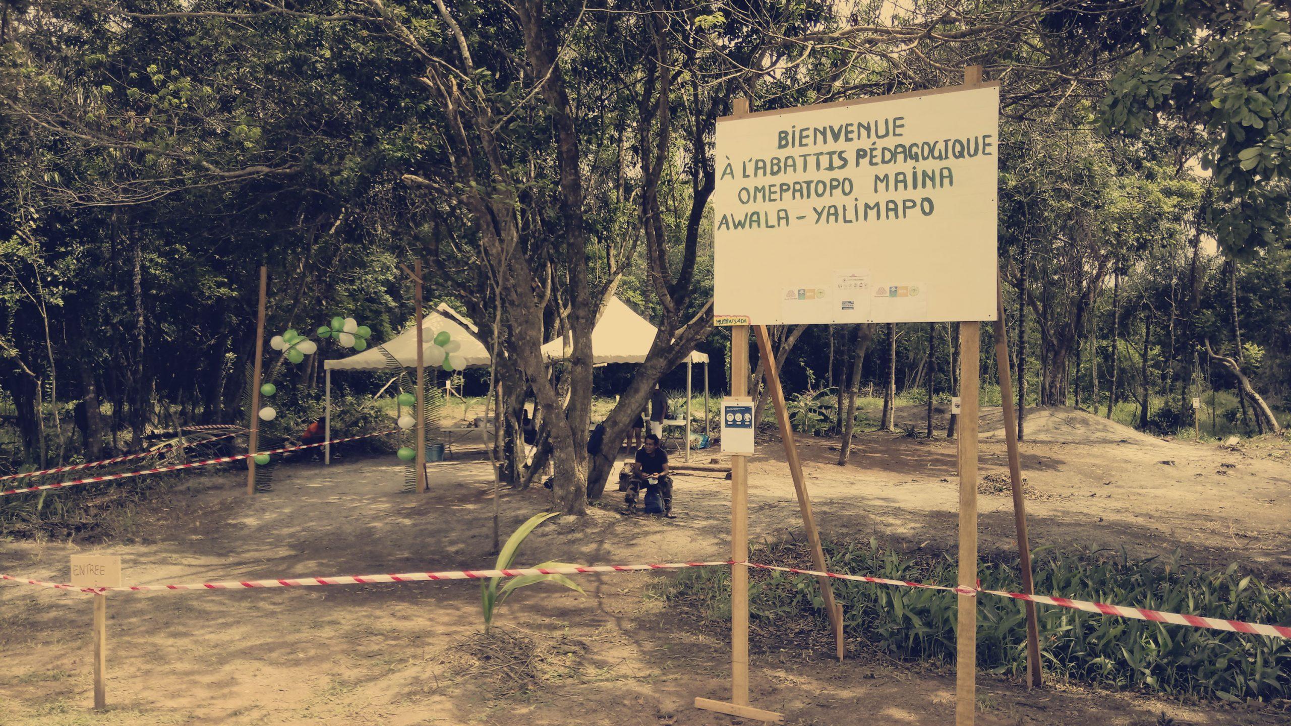 Accompagnement de parcelles agro écologiques dans les communautés Kali'na de l'Ouest Guyanais